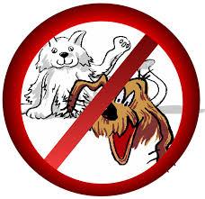 Pas animaux